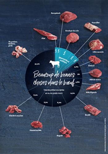 Graphiques – Beaucoup de bonnes choses dans le bœuf